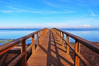 bridge-1525326_1280